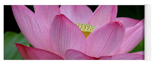 Lotus-center Of Being IIi Dl033 Yoga Mat