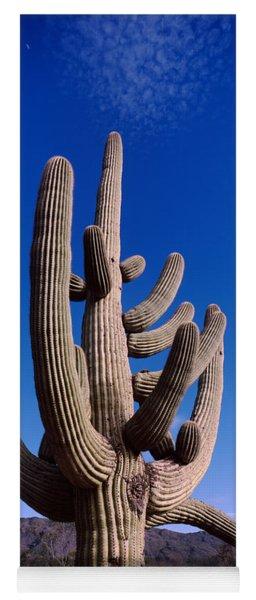 Low Angle View Of A Saguaro Cactus Yoga Mat