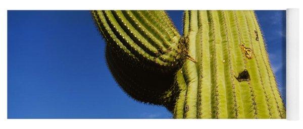 Low Angle View Of Saguaro Cactus Yoga Mat