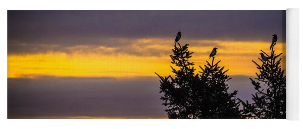 Magpies At Sunrise Yoga Mat