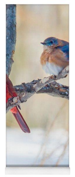 Male Bluebird And Cardinal On Branch Yoga Mat