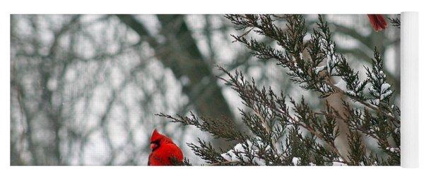 Male Cardinal Pair Yoga Mat
