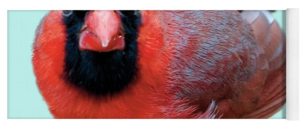 Male Cardinal Portrait Yoga Mat