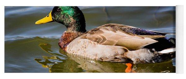 Mallard In Pond Yoga Mat