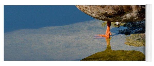 Mallard Reflection Yoga Mat