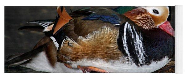 Mandarin Duck Yoga Mat
