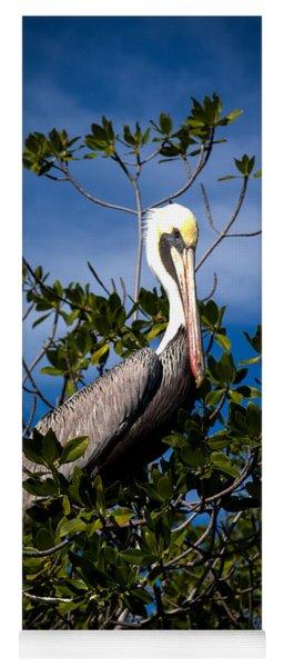 Mangrove Pelican Yoga Mat