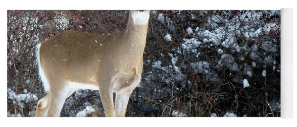 March Snow And A Doe Yoga Mat
