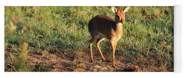 Masai Mara Dikdik Deer Yoga Mat