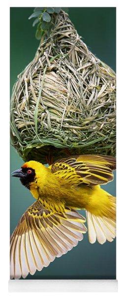 Masked Weaver At Nest Yoga Mat