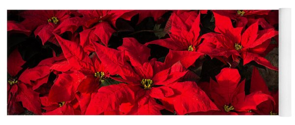 Merry Scarlet Poinsettias Christmas Star Yoga Mat