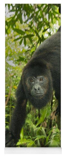 Mexican Black Howler Monkey Belize Yoga Mat