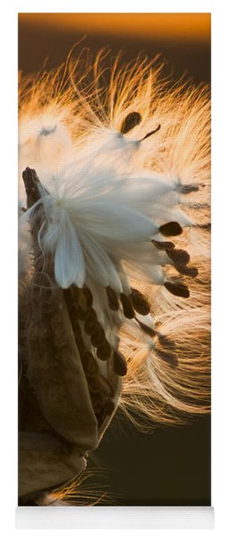Milkweed Seed Pod Yoga Mat