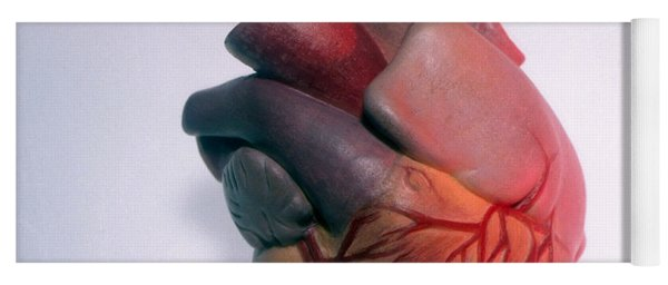 Model Of Heart Yoga Mat