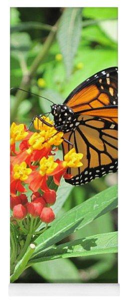 Monarch At Rest Yoga Mat