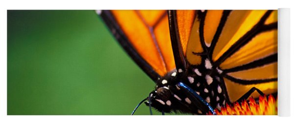 Monarch Butterfly Headshot Yoga Mat
