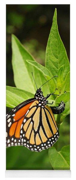Monarch Egg Time Yoga Mat