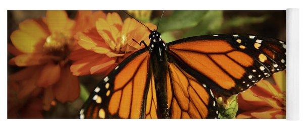 Monarch Spotlight. Yoga Mat