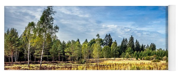 Wetlands In The Black Forest Yoga Mat