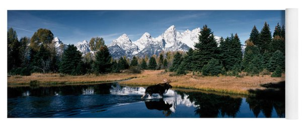 Moose & Beaver Pond Grand Teton Yoga Mat