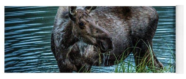 Moose In The Water Yoga Mat