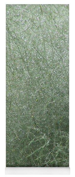 Morning Dew On Green Asparagus Fern Yoga Mat