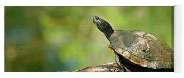 Mossy Turtle Yoga Mat