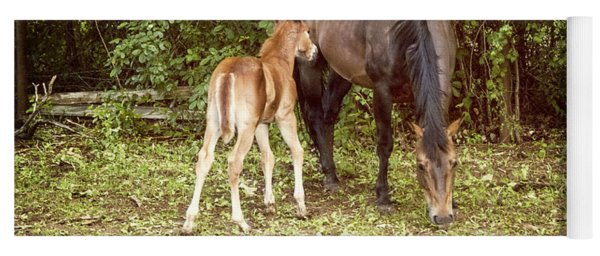 Mother And Foal Yoga Mat