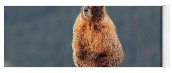 Mother Marmot Yoga Mat