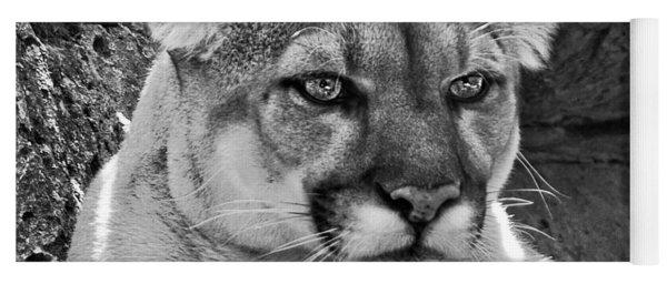 Mountain Lion Bergen County Zoo Yoga Mat