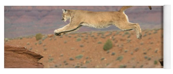 Mountain Lion Leaping Yoga Mat