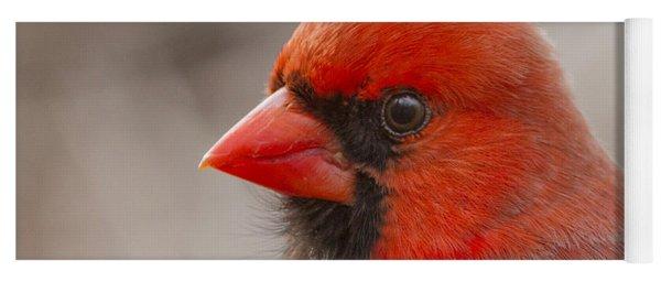 Mr Cardinal Portrait Yoga Mat