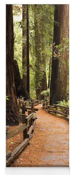 Muir Woods Trail Yoga Mat