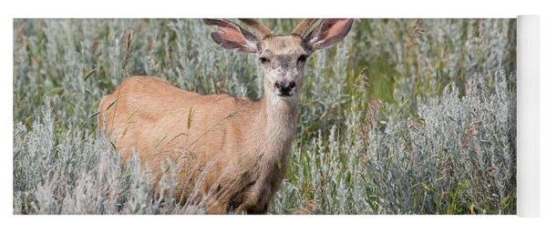 Mule Deer Yoga Mat