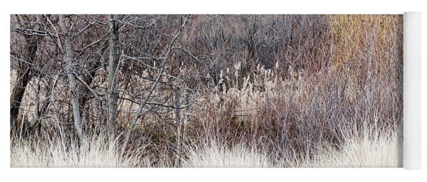 Muted Colors Of Winter Forest Yoga Mat