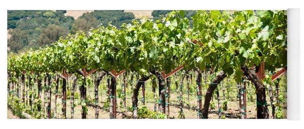 Napa Vineyard Grapes Yoga Mat