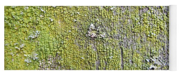 Natural Abstract 1 Old Fence With Moss Yoga Mat