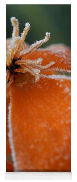 Natures Frost Yoga Mat