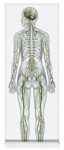 Nervous System, Illustration Yoga Mat