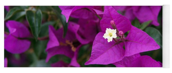 New River Bougainvillea Yoga Mat