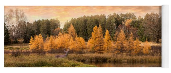 Yoga Mat featuring the photograph Tamarack Buck by Patti Deters