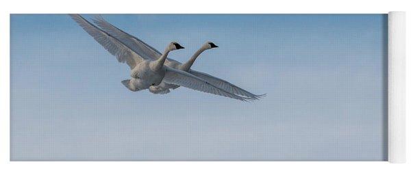 Trumpeter Swan Tandem Flight I Yoga Mat