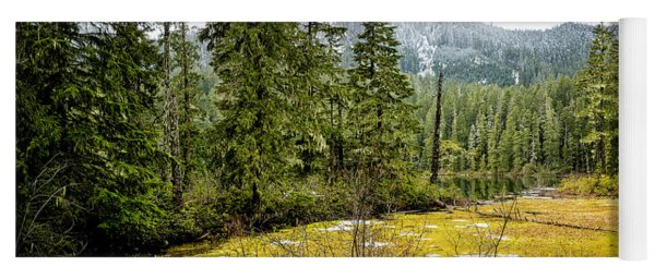 Yoga Mat featuring the photograph No Man's Land by Belinda Greb