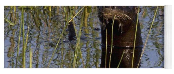 North American River Otter Yoga Mat