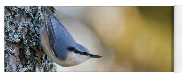 Nuthatch In The Classical Position Yoga Mat