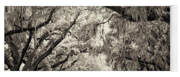 Oak Trees Of Charleston South Carolina In Sepia Yoga Mat