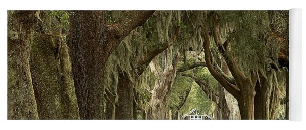 Oaks Of The Golden Isles Yoga Mat