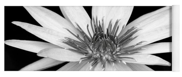 One Black And White Water Lily Yoga Mat