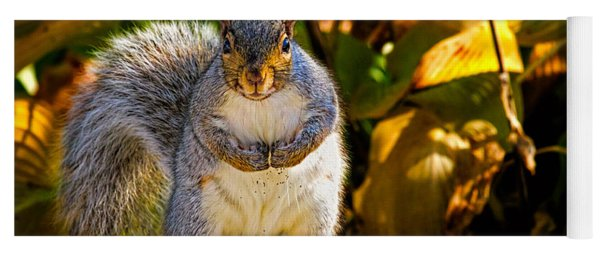 One Gray Squirrel Yoga Mat