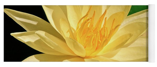 One Water Lily  Yoga Mat